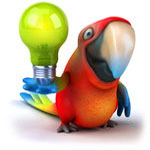 Parrot with a lightbulb