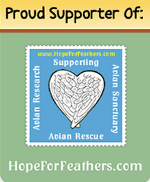 HopeForFeathers.com